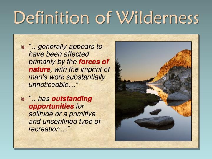Definition of Wilderness