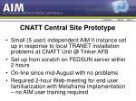 cnatt central site prototype
