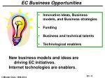 ec business opportunities