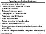 opening an online business