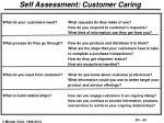 self assessment customer caring