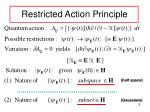restricted action principle
