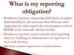 what is my reporting obligation