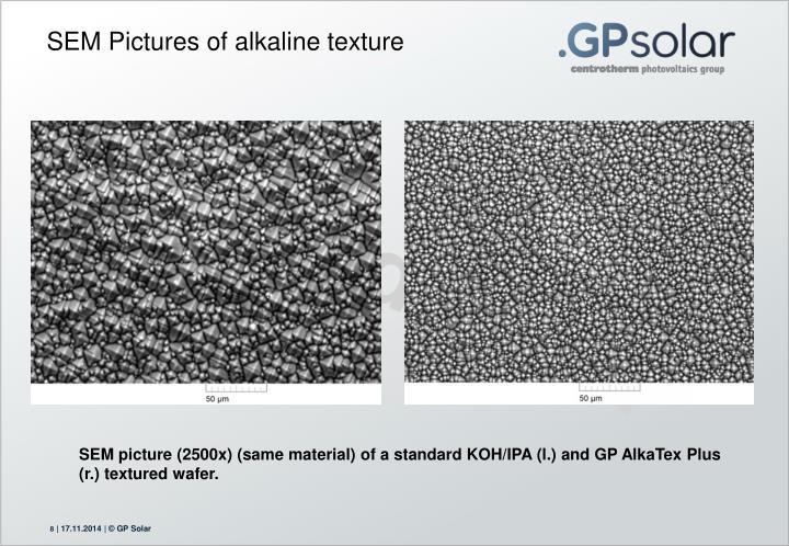 SEM Pictures of alkaline texture