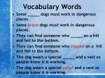 vocabulary words1
