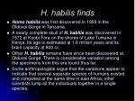 h habilis finds