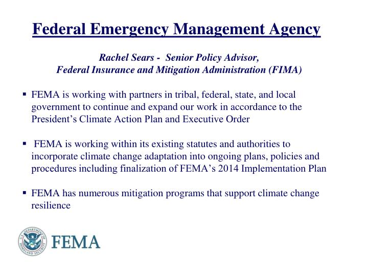 federal emergency management agency n.