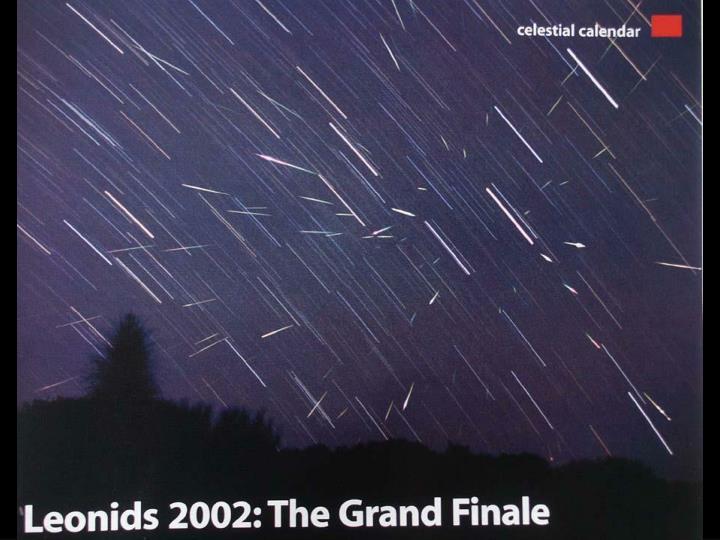 Leonids '02