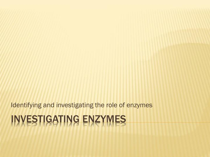identifying and investigating the role of enzymes n.