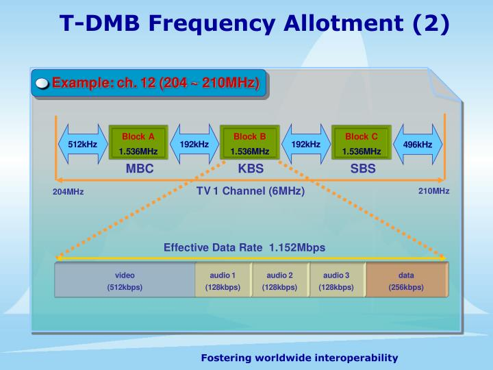 T-DMB Frequency Allotment (2)