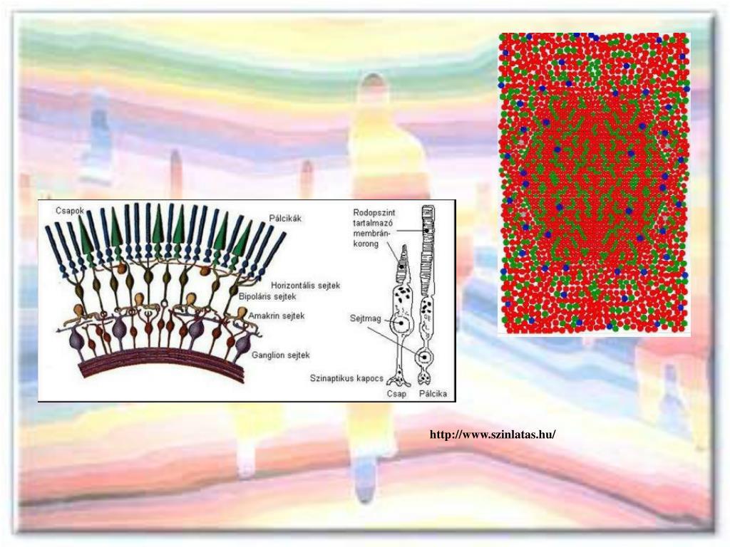 Az A4 nyomtatási kép ellenőrzési táblázat, Látás-ellenőrzési táblázat
