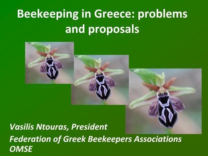 beekeeping in greece problems and proposals n.