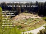 greek beekeeping in numbers
