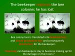 the beekeeper replaces the bee colonies he has lost