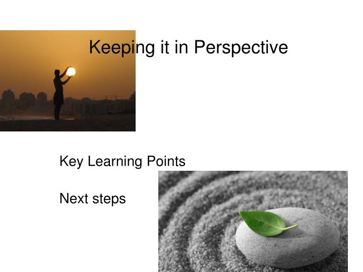 keeping it in perspective key learning points next steps n.