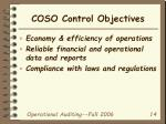 coso control objectives