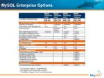 mysql enterprise options1
