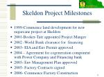 skeldon project milestones