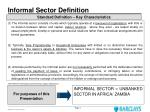 informal sector definition