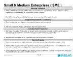 small medium enterprises sme