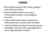 toraxi3