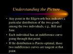 understanding the picture