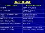 halothane1