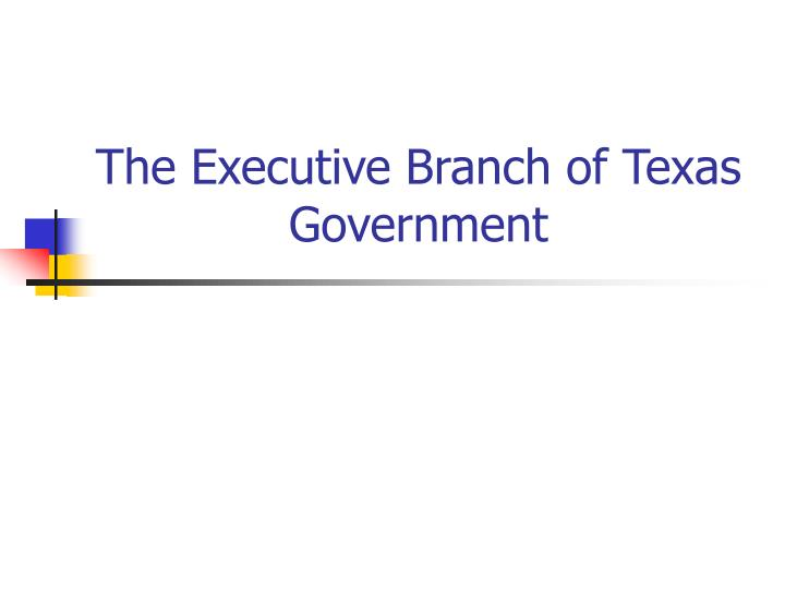 the executive branch of texas government n.