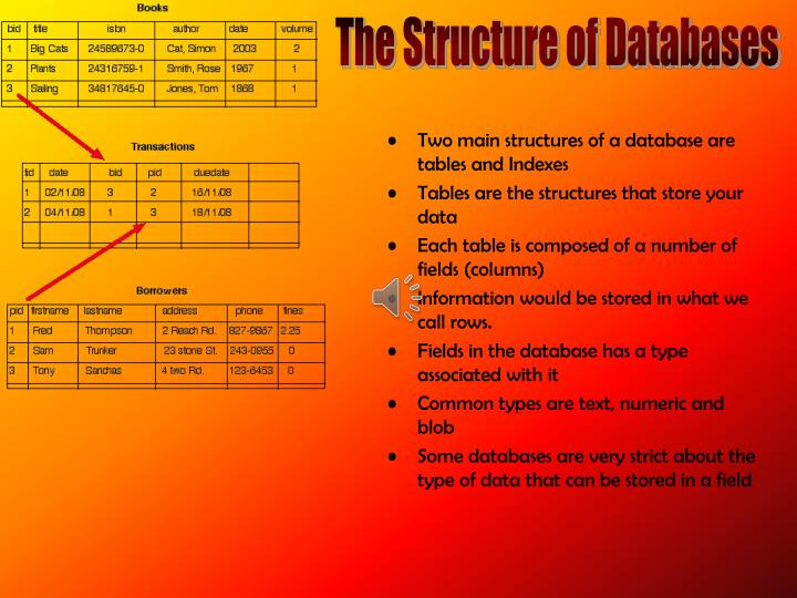 The Structure of Databases