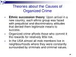 theories about the causes of organized crime1