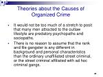 theories about the causes of organized crime2