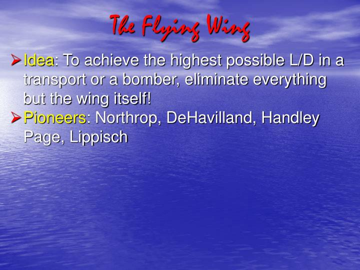the flying wing n.