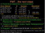 fmt the next steps