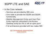 3gpp lte and sae11