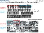 face recognition vs object categorisation