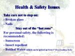 health safety issues2