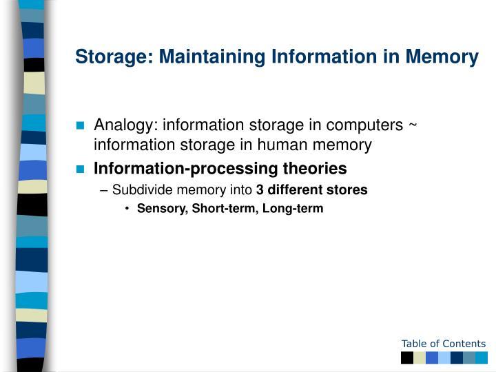 Storage: Maintaining Information in Memory