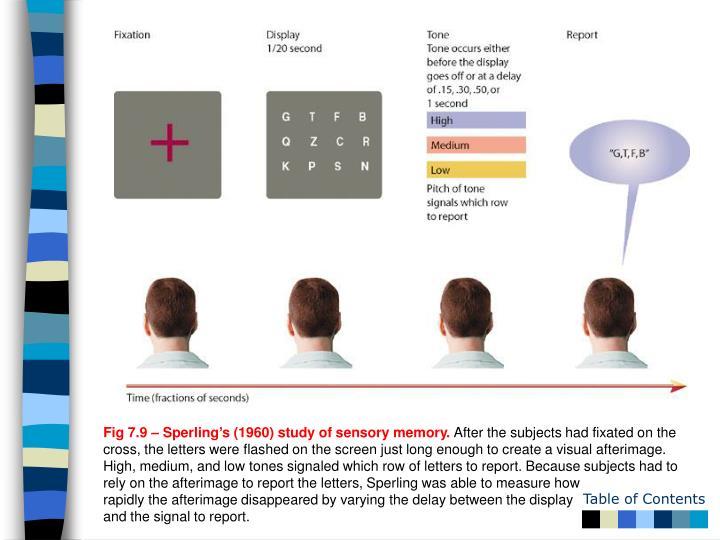 Fig 7.9 – Sperling's (1960) study of sensory memory.
