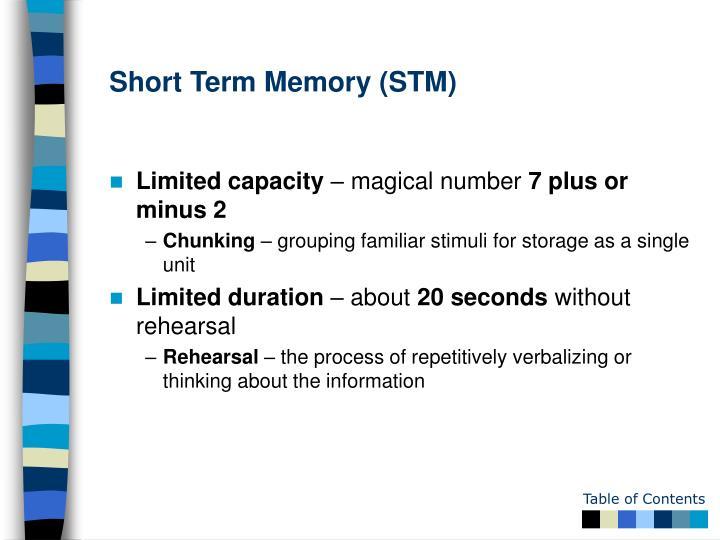 Short Term Memory (STM)
