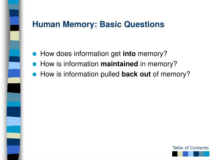 Human Memory: Basic Questions