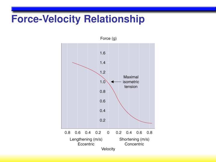 Force-Velocity Relationship