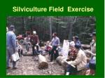silviculture field exercise