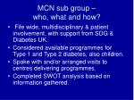 mcn sub group who what and how