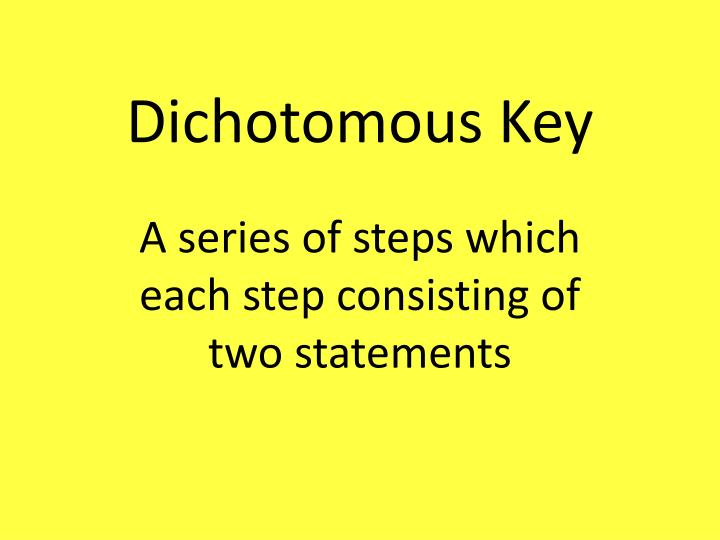 dichotomous key n.