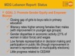 mdg lebanon report status2