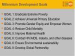 millennium development goals1