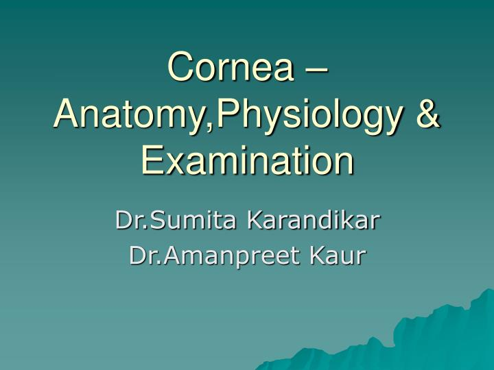 PPT - Cornea – Anatomy,Physiology & Examination PowerPoint ...