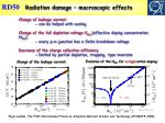 radiation damage macroscopic effects