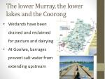 the lower murray the lower lakes and the coorong