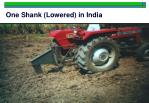 one shank lowered in india